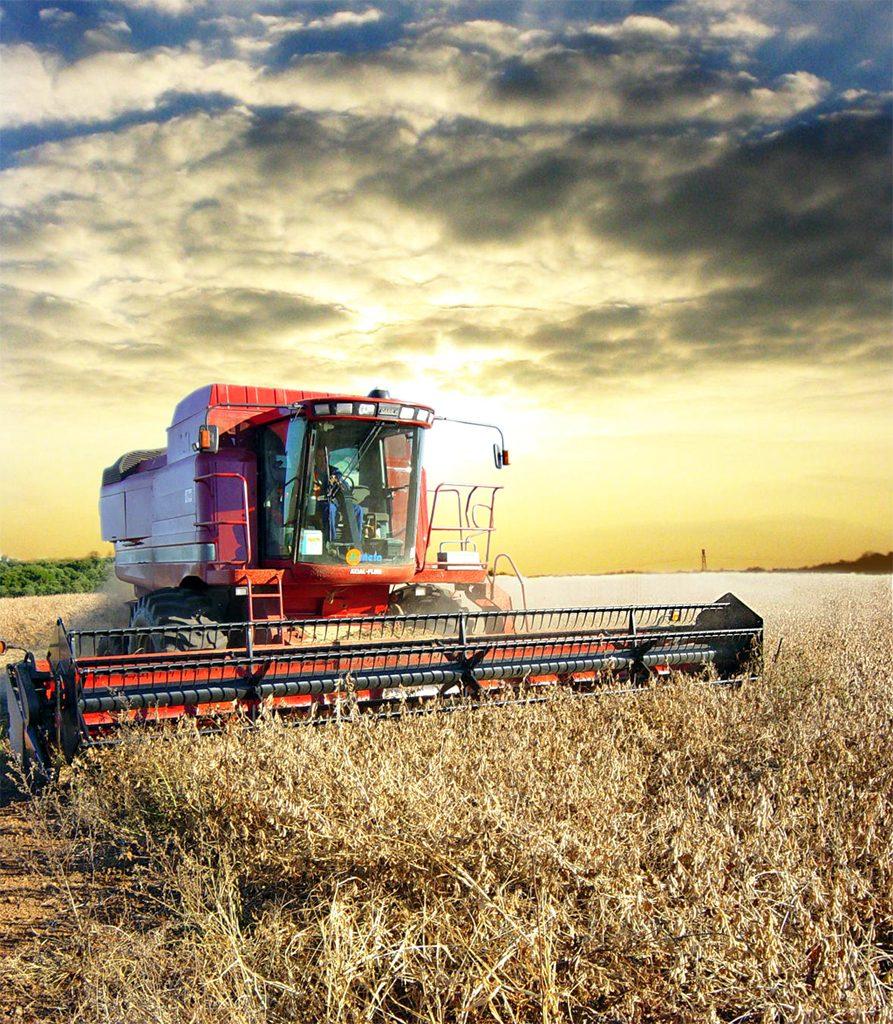wheat crops in field, red tracker cutting wheat