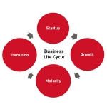 Where Are You in the Life Cycle of Your Business?