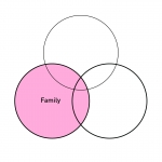 Business Succession Series Article 2 of 4 – The Family Circle