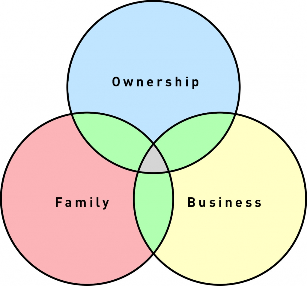 Business Succession – The Family Circle