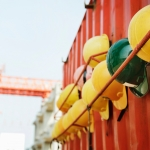 The Effects of Federal Carbon Tax on Construction Contracts