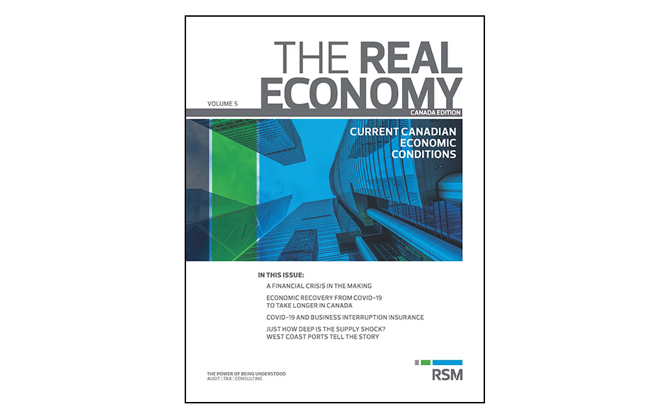 Image of front cover of RSM Real Economy Volume 5